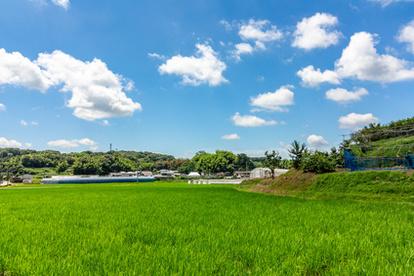 田舎 田園風景