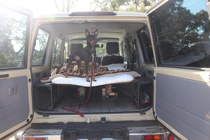 いま流行の「ソロキャンプ」を女子が体験リポート! 危険を避けて手軽に楽しむには「車中泊」が鍵だった