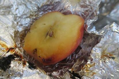 Colemanのファイヤーディスクでつくった焼きリンゴ