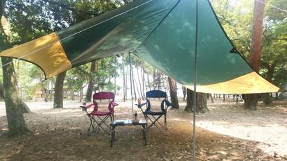 キャンプにワンコを連れて行くときの注意点