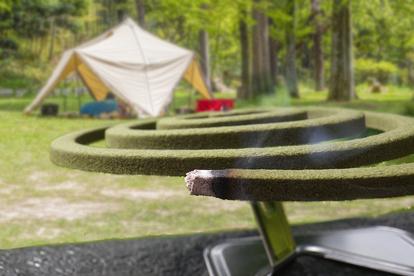 夏キャンプの「虫対策」で再び脚光! 意外と侮れない「蚊取り線香」の効能