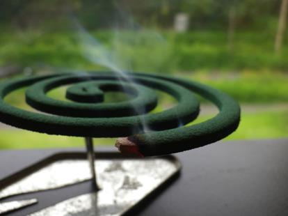 日本の伝統的虫除け「蚊取り線香」は夏のキャンプで必需品
