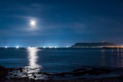 月明かりのなかお月見