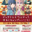 最大50,000円相当の豪華賞品が当たる「Go Camp Festa( ゴー キャンプ フェスタ )」10月14日(木)から、全国のシュープラザ、東京靴流通センター、公式オンラインショップなどで開催。(New!!)