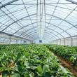 「持続可能な食料生産・地域」目指すアクションを学生が発表 JA全中・東農大・共同通信が「SDGs国消国産の日」シンポジウム(New!!)