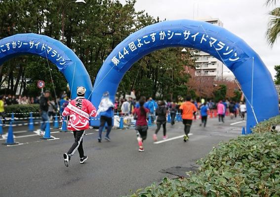 マラソン 2019 シーサイド 横須賀
