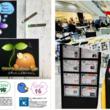 『【SDGs企画イベント】芸術の秋、チョークアートで「SDGs」を学ぶ知育ワークショップを開催!(New!!)』のサムネイル